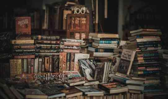 冷门小众的绝版书赚钱思路-爱收集-羊毛线报网